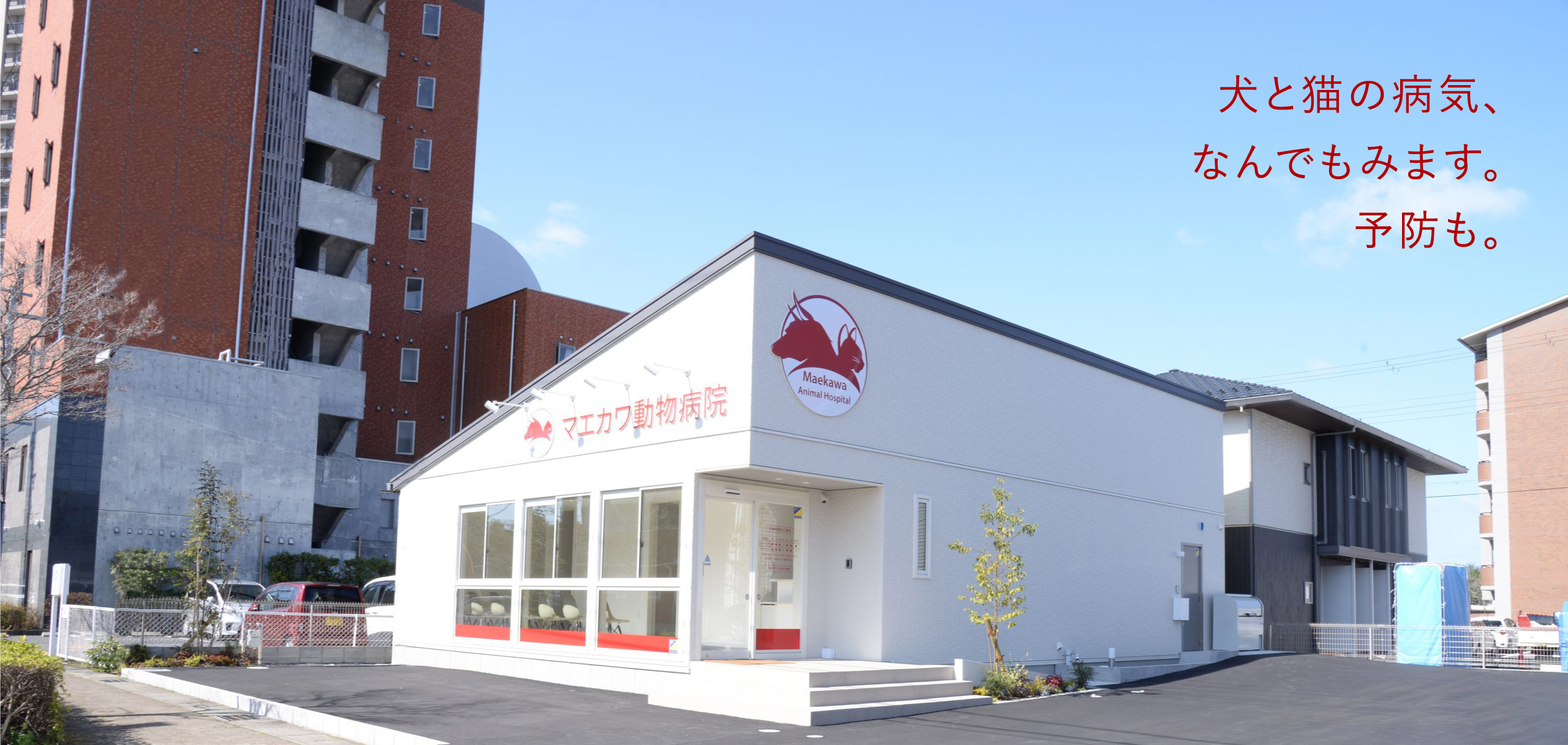 滋賀県栗東市の動物病院、マエカワ動物病院